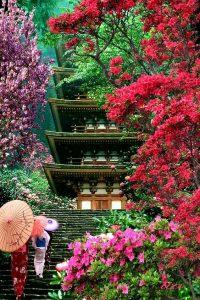 Kyoto Giappone viaggio in Giappone